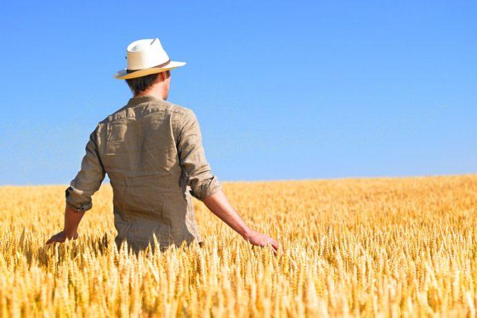 Avviso Pubblico – 70 mila euro per i giovani agricoltori