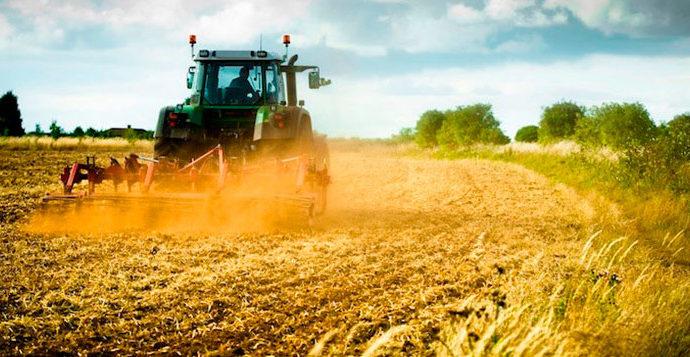 Bando, Sostegno a investimenti per la trasformazione, la commercializzazione e lo sviluppo dei prodotti agricoli
